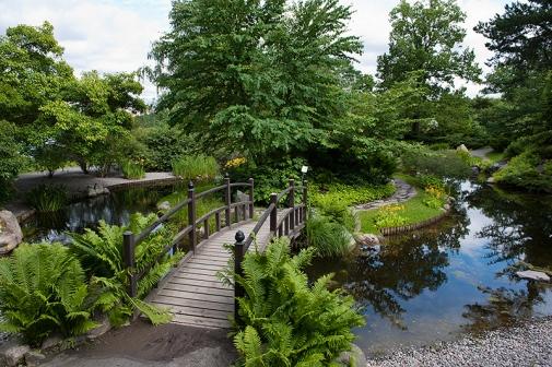 Trädgård trädgård damm : TrädgÃ¥rd Med Damm: Den trädgÃ¥rd damm royalty fria stockfoton ...