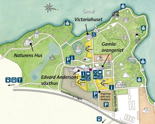 Karta Stockholms Universitet.Karta Over Tradgarden Bergianska Tradgarden