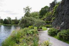 Promenadslinga i Bergianska trädgården visar landväxternas evolution
