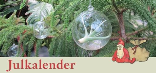Bergianskas Julkalender